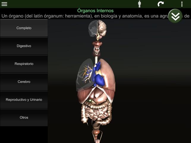 Órganos 3D (anatomía) en App Store