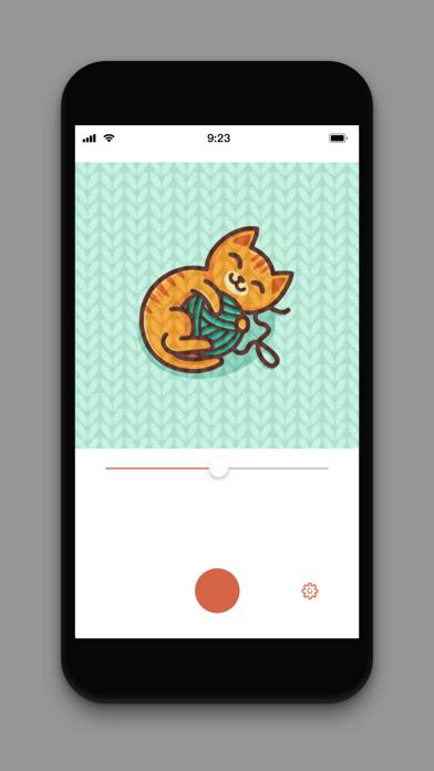 KintShot screenshot two