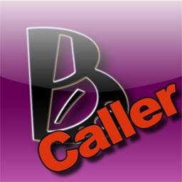 WiFi Bingo Caller