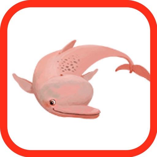 El delfín Sinfín