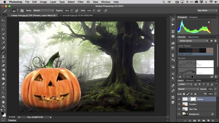 Learn! For Adobe Photoshop