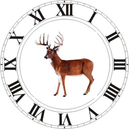 Best Hunting Times Apple Watch App