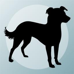 Dog Breeds Quizzes