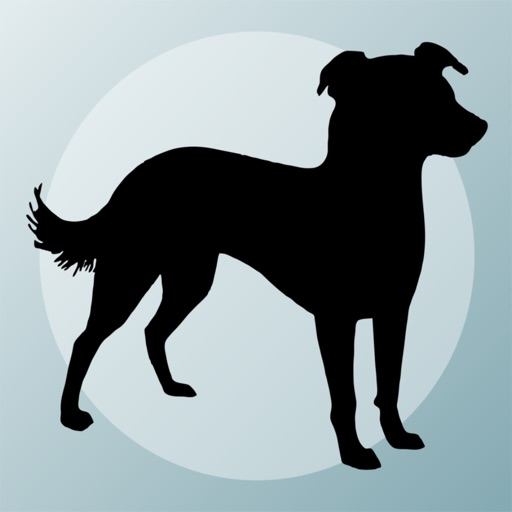 Dog Breeds Quizzes icon