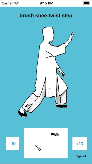 T'ai Chi Ch'uanのおすすめ画像5