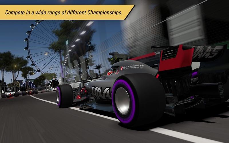 F1™ 2017 screenshot 3