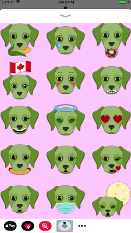 Saint Patrick's Day Labrador screenshot-3
