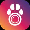 PetCamApp - Monitor para cão