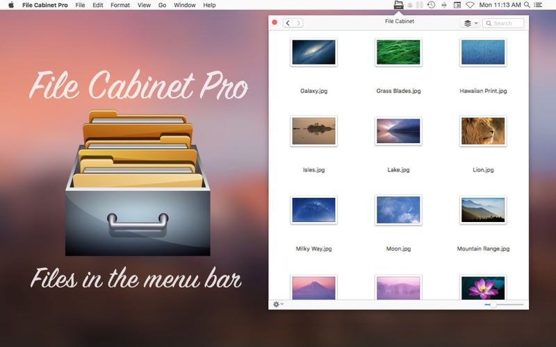 File Cabinet Pro Screenshots