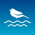 AI River 清流と森林浴 icon