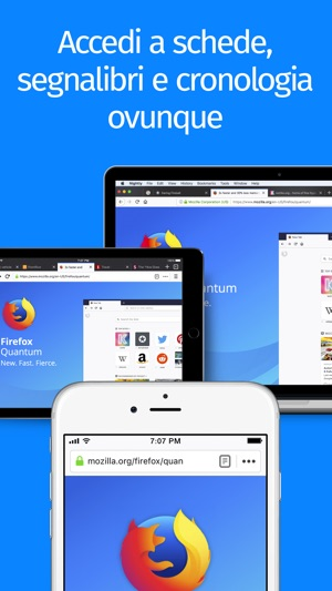 Browser web Firefox Screenshot