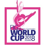RGWCUP PESARO 2018