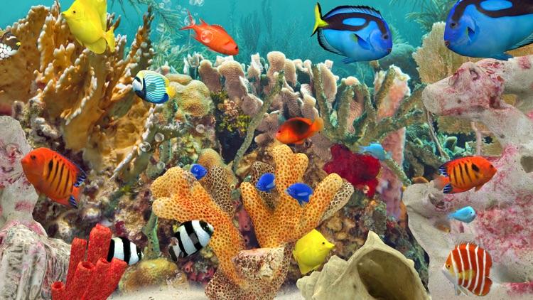 MyReef 3D Aquarium 3