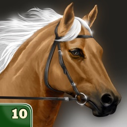 My Horse Life Story Quiz Game