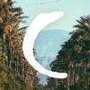 Coachella 2018 Official Reviews