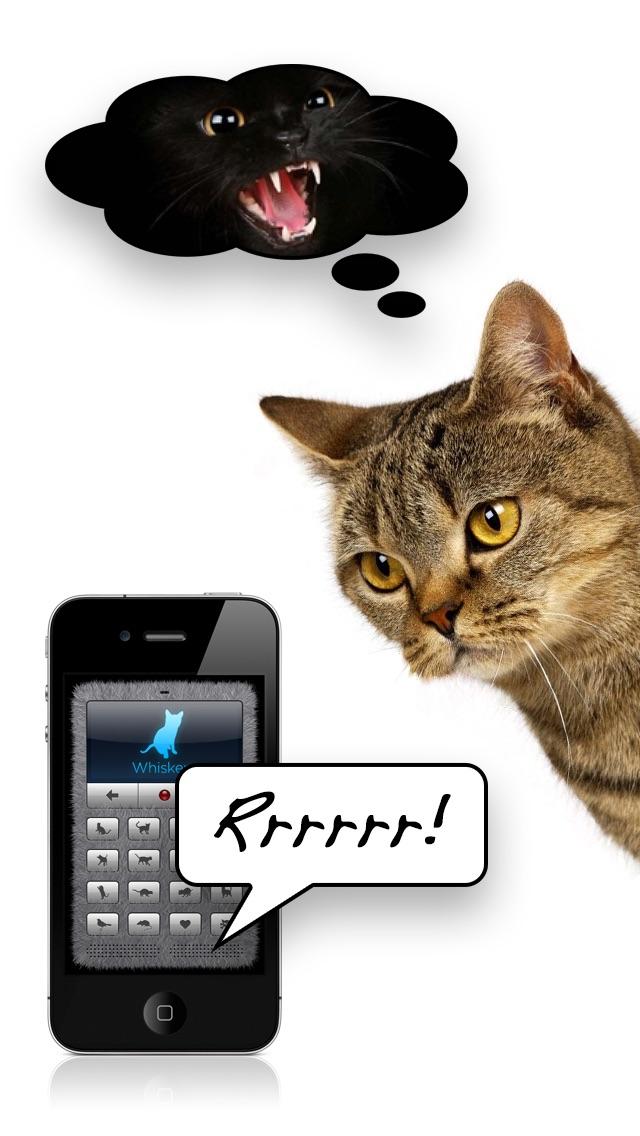 고양이 통역 도우미 for Windows