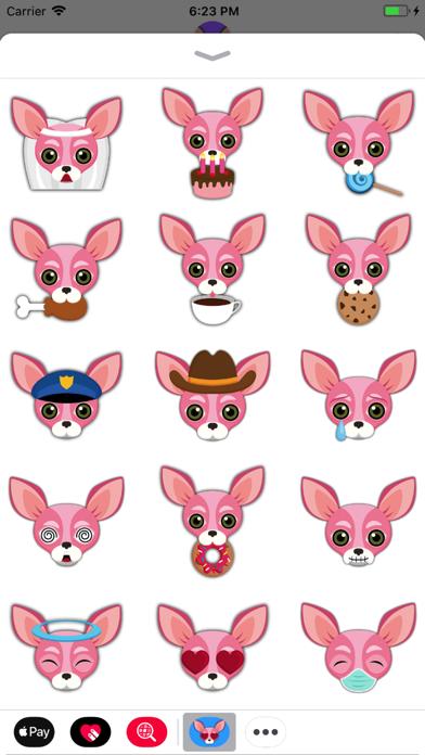 Animated Pink Chihuahua screenshot one