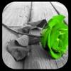 Picture Splash - iPhoneアプリ