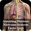 Nervous System Facts Quiz 3000