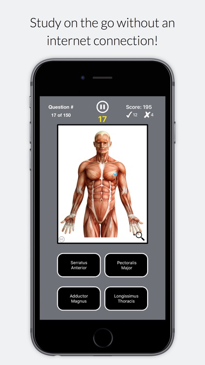 Anatomist – Anatomy Quiz App for Medical Students screenshot-3