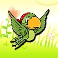 Codes for Color Parrot Challange Hack