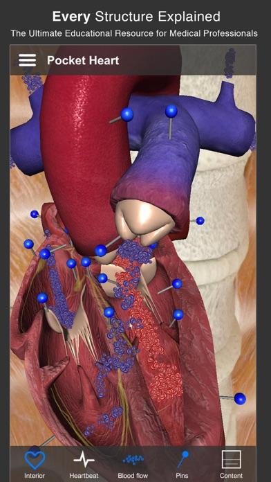 Pocket Heart - インタラクティブ心臓学 ScreenShot1