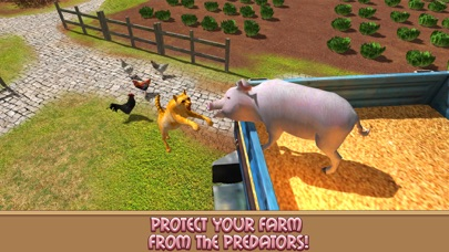 点击获取Life of House Pig Simulator