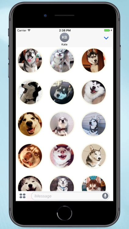 Husky Faces Stickers
