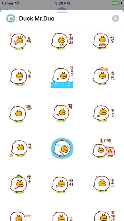 Small Duck Mr.Duo Sticker