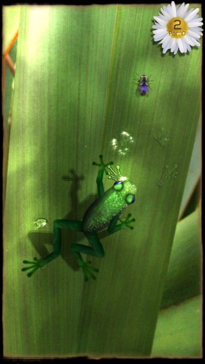 Ancient Frog screenshot-3