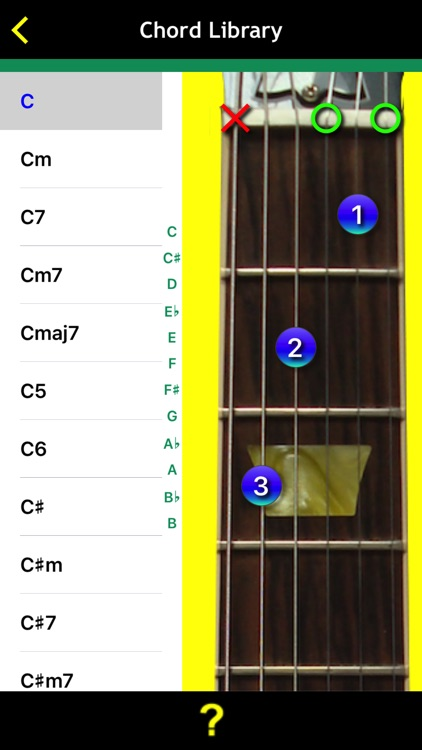 Guitar Basics For Dummies screenshot-4