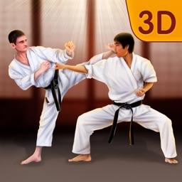 Shotokan Karate Ninja Fighting