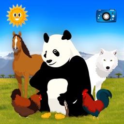 Find Them All: Animal Finder