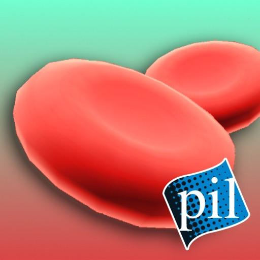 PI VR Human Body
