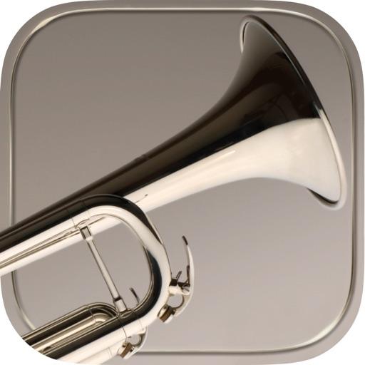 iFretless Brass