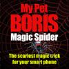 Magic Spider - My Pet...