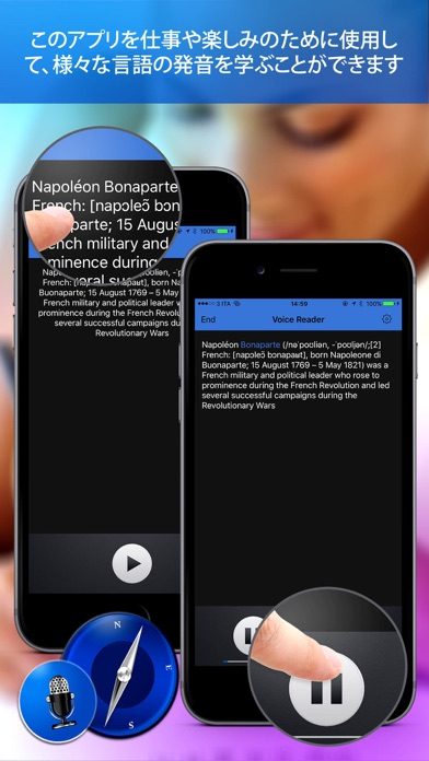 Voice Reader For Web Pro screenshot1