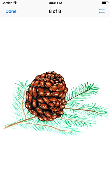 Pine Cone Stickers screenshot-8