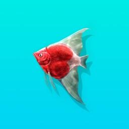 Dreamcatch - Fantasy Fishing Game & Aquarium