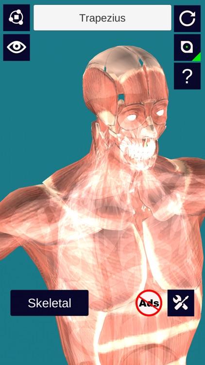 3D Anatomy + screenshot-3