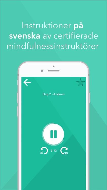 Mindfulnessresan