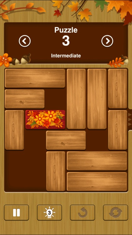 Unblock Me Premium - Classic Block Puzzle Game screenshot-2