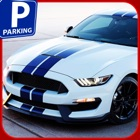 Backyard Parking Mania 3D icon