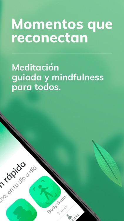 Bambú - Meditación