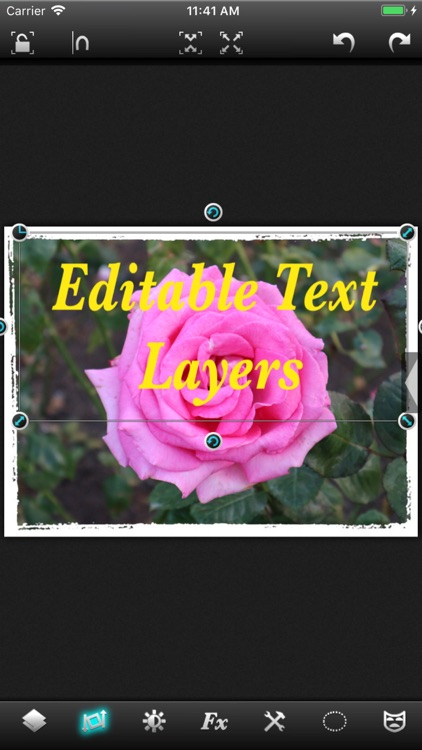 Leonardo - Photo Layer Editor screenshot-3