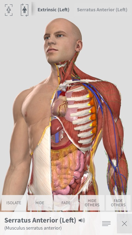 Complete Anatomy for iPhone screenshot-0
