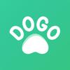 Dogo — o preferido do seu cão