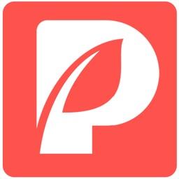 Palxo - Chat. Dating. Meet app