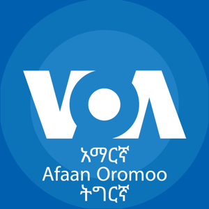Voice of America Horn of Afric - News app