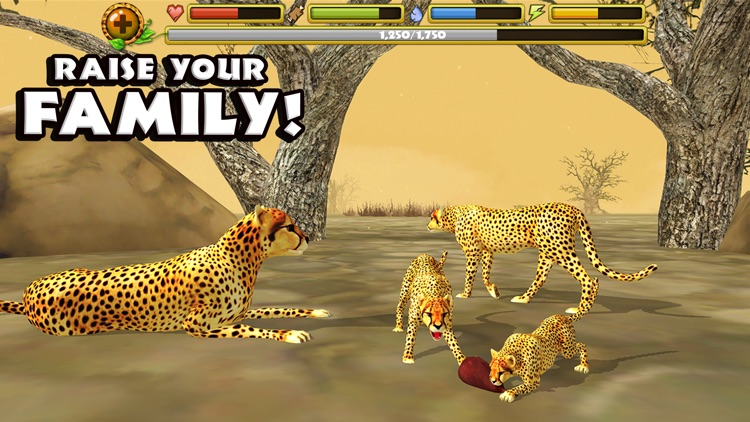 Cheetah Simulator screenshot-3